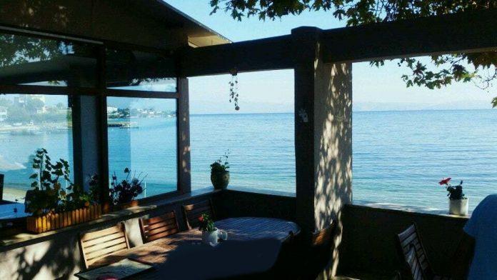 Çınar Ağacı Restoran