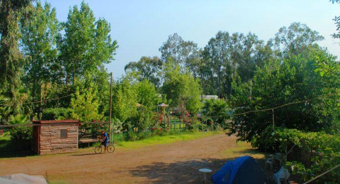 Medusa Bar & Patara Camping