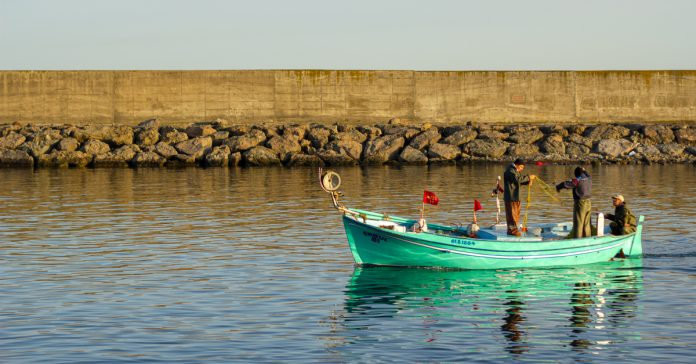 Trabzon'da balıkçılık