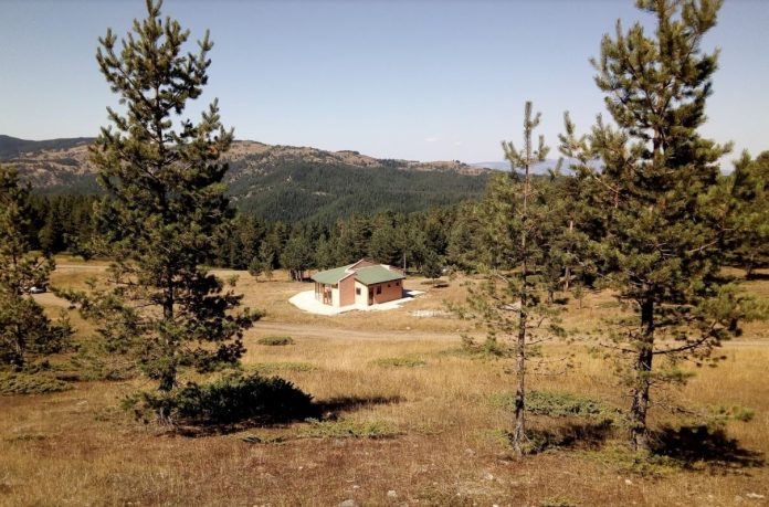 Bayat Kunduzlu Kamp Alanı