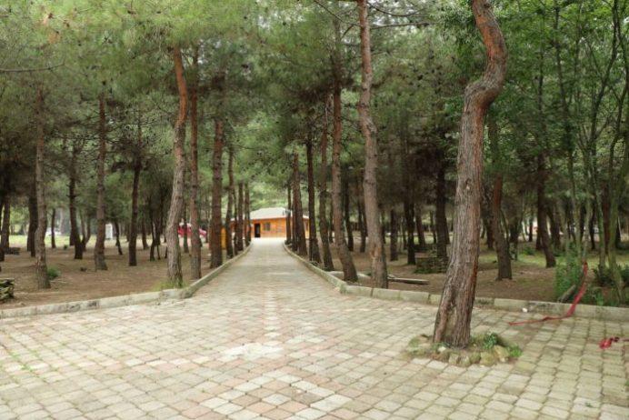 Bayraktepe Tabiat Parkı Kamp Alanı