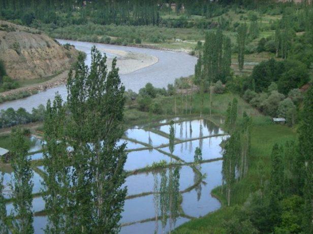 Bozdağ-Uzundere Kamp Alanı