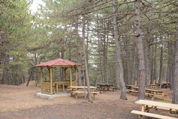 Çatak Tabiat Parkı Kamp Alanı