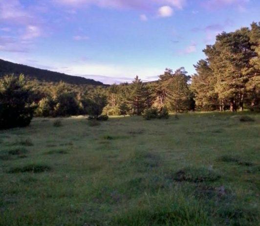 Hisarbeyli Yaylası Kamp Alanı