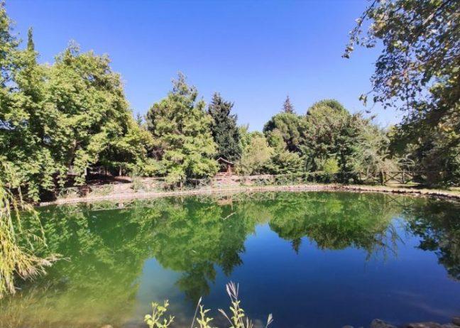 Kapıçam Tabiat Parkı Kamp Alanı
