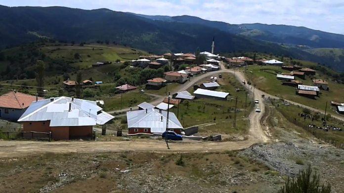 Kargı Başköy Kamp Alanı