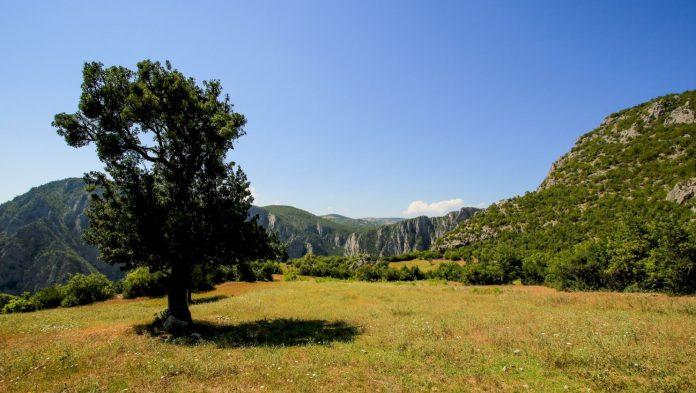 Şahinkaya Kanyonu Tabiat Parkı Kamp Alanı