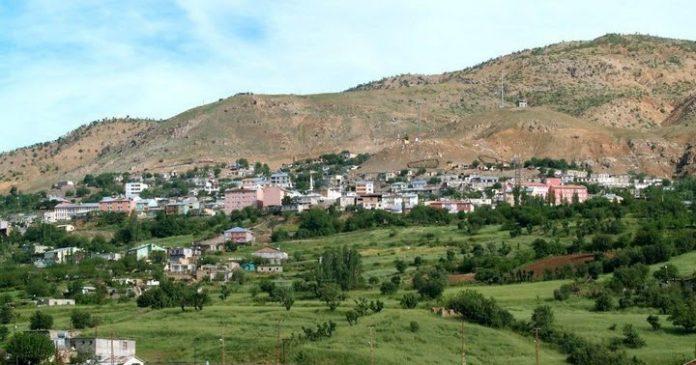 Salkımlı Köyü Kamp Alanı