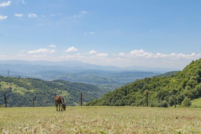Zonguldak Kamp Yerleri
