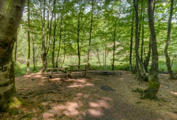 Zonguldak Kent Ormanı