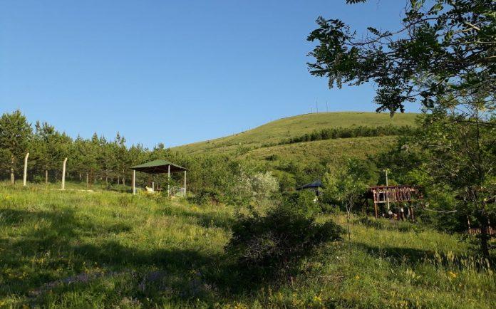 Aslandağ Vilayet Ormanı Kamp Alanı