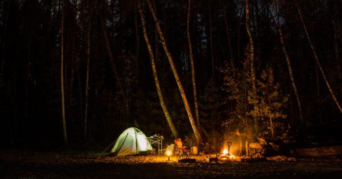 Orman Kampı