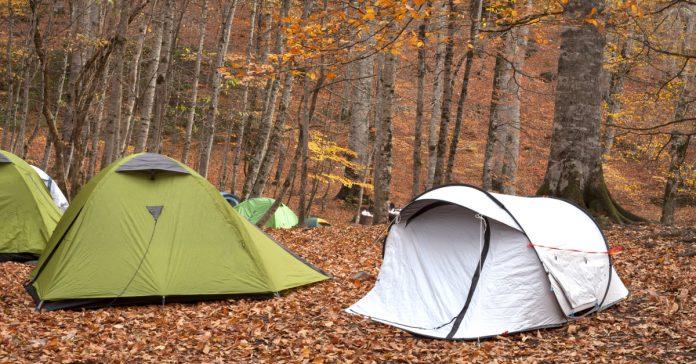 Abant kamp