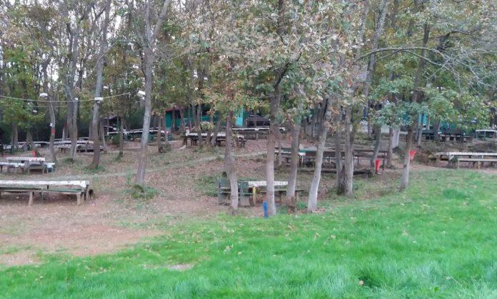 Cafer Babanın Yeri Piknik Alanı
