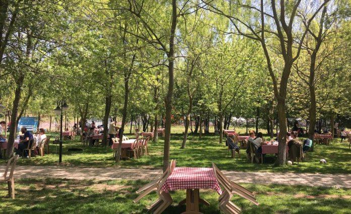 Çınar Piknik Alanı