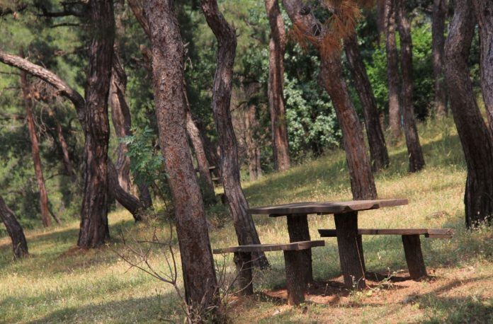 Dilburnu Tabiat Parkı