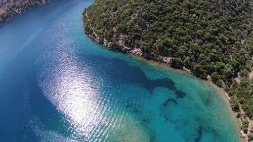 Domuz Adası