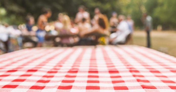 Kütahya'da piknik