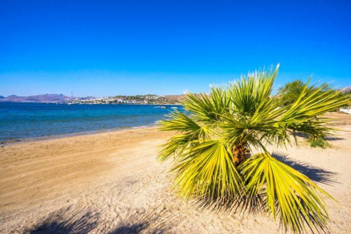 Bitez Halk Plajı