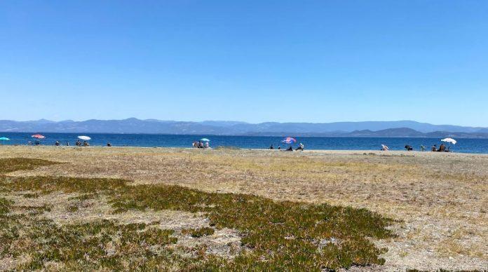 Fener Plajı