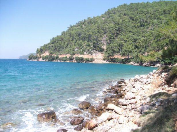 Hayıtlı Plajı