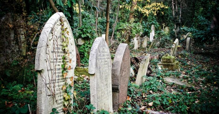 highgate mezarlığı