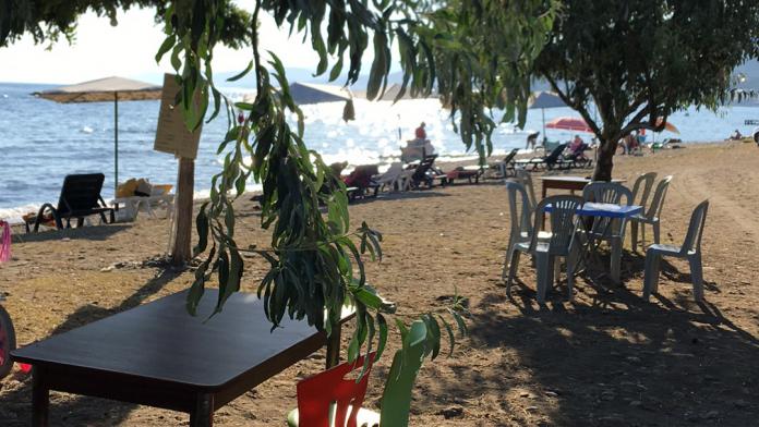 Safari Beach & Cafe
