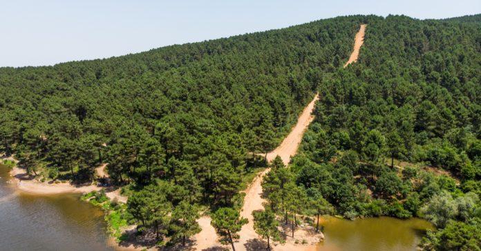 aydos ormanı