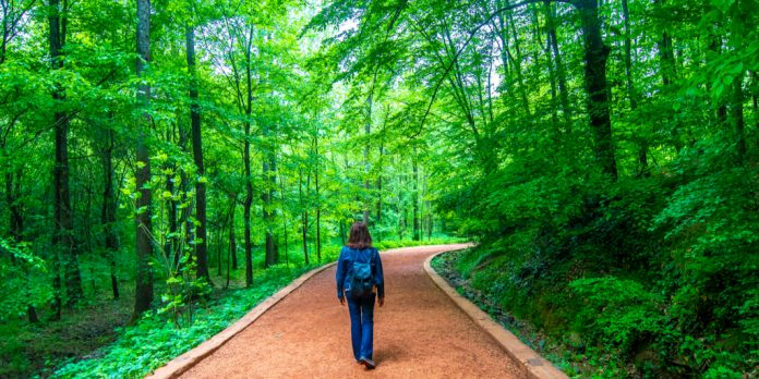 belgrad ormanı yürüyüş parkuru
