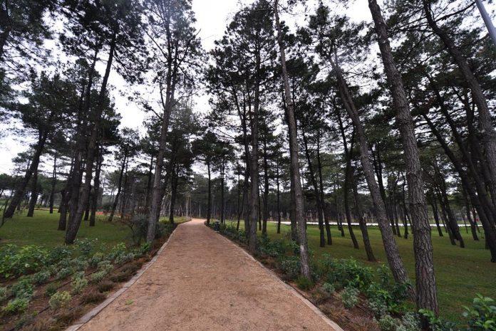 sancaktepe orman parkı