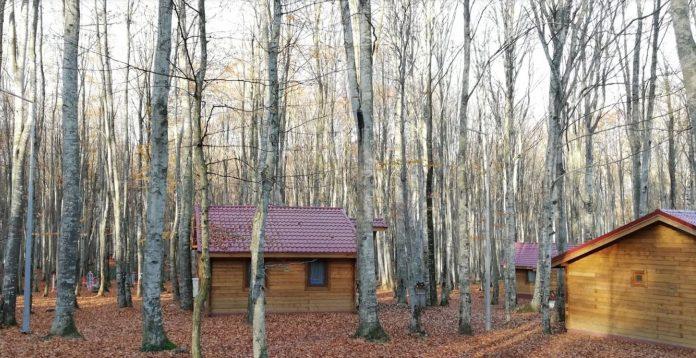 Eriklitepe Tabiat Parkı Kır Evleri