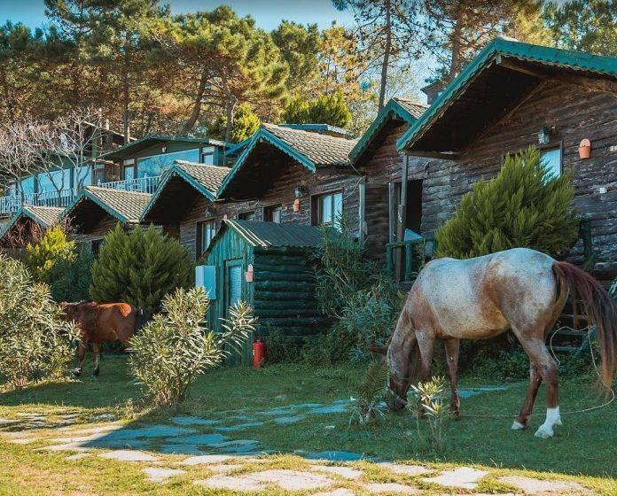 Woody Ville Çadır & Bungalov