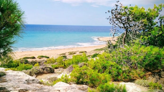 Alagadi Turtle Paradise Beach